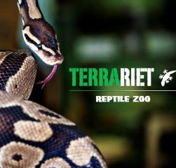 BørneKulturFestival. Terrariet Reptile Zoo
